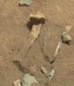 ¿Un femur fotografiado en Marte por la sonda Curiosity?
